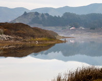Misty Morning at Rodeo Lagoon