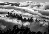 Mount Tam Summer Fog